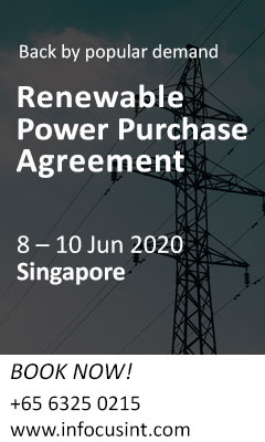 Renewable Power Purchase Agreements (RPPAs)